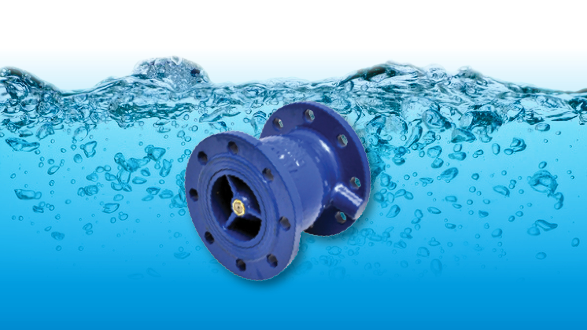 Non Return Valve Solutions Network Safety
