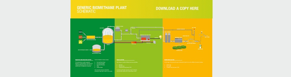 Renewable Gas Schematic