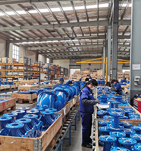 AVK China Check valves and fittings inspection